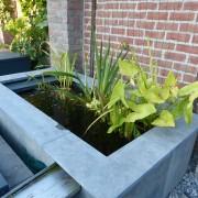 Vijver plantenfilter